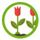 icon_zierpflanze