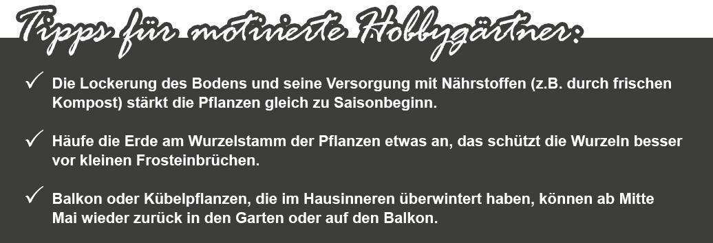 14_KW09_Garten_fit_machen_1074