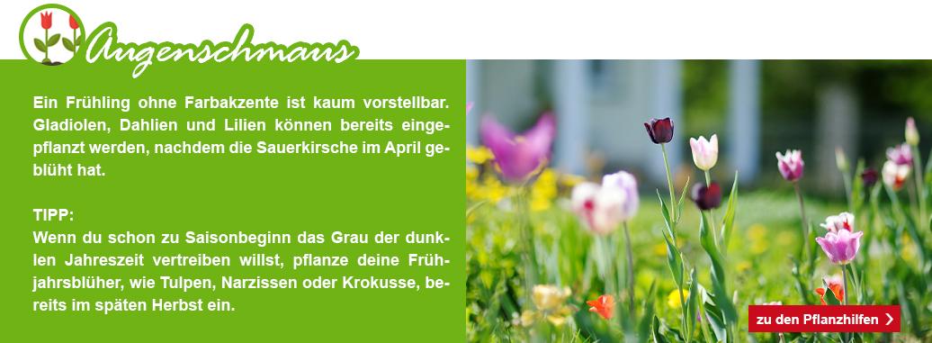 13_KW09_Garten_fit_machen_1074