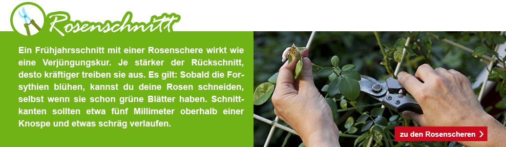 6_KW09_Garten_fit_machen_1074