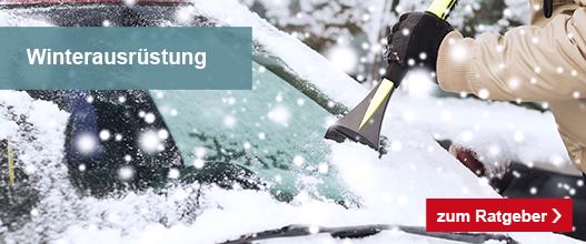lp__auto_winterfest_frostschutz_2019