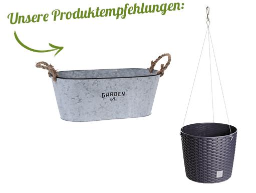 KW22_Garten-dekorieren_Landingpage_1074_desktop_53