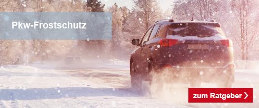 4_lp_auto_winterfest_autobatterie_2019