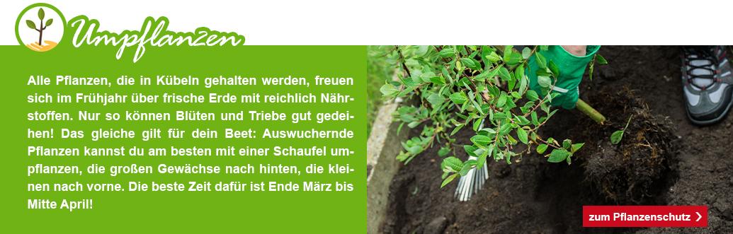 7_KW09_Garten_fit_machen_1074