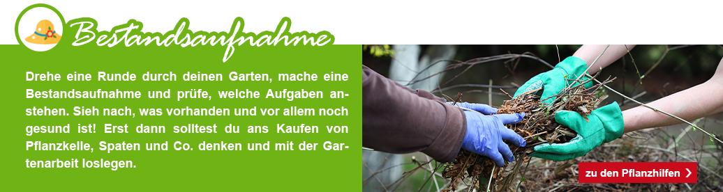 2_KW09_Garten_fit_machen_1074