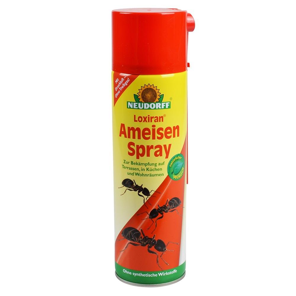 NEUDORFF Loxiran® Ameisenspray 19ml